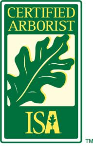 ISA Certified Arborist Palm Bay FL Melbourne FL