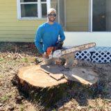 Tree Service Tree Removal Palm Bay FL Melbourne FL