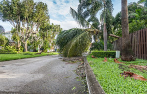 Storm cleanup Property Cleanup Palm Bay FL Melbourne FL